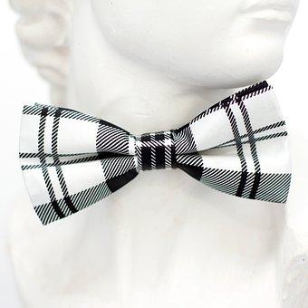 White, Black, Checkered, Fly, Tie, Loop, Fashion, Man