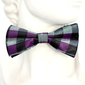 Purple, Black, Checkered, Fly, Tie, Loop, Fashion, Man