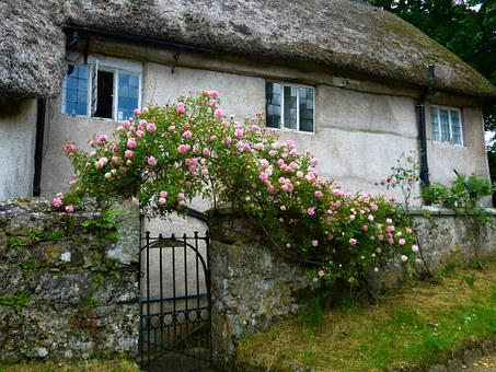 Home, Roses, Rose Arch, Old, Romantic, Building