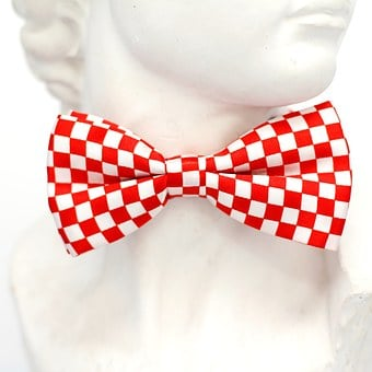 Red, Checkered, Fly, Tie, Loop, Fashion, Man, Profile