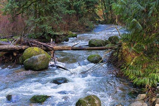 Water, Creek, Nature, River, Stream, Spring, Scenic