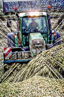 Tractor, Fendt, Tractors, Silage