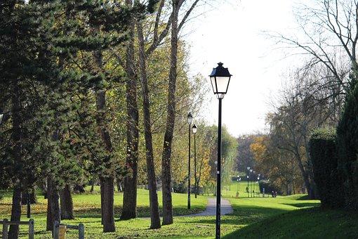 Garden, Path, Tree, Green, Park, Based, Nature, Grass