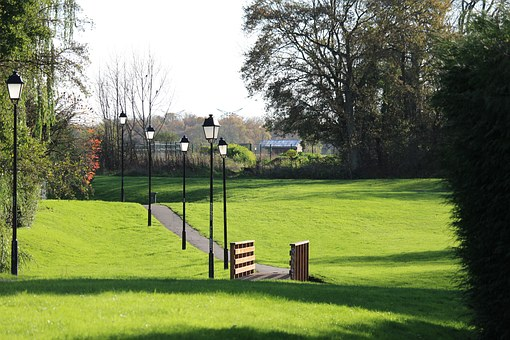 Garden, Path Tree, Green, Bridge, Park, Based, Nature