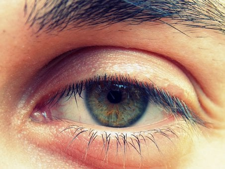 Eye, Iris, Viewing, Eyes, Eye Lashes Green, Vision