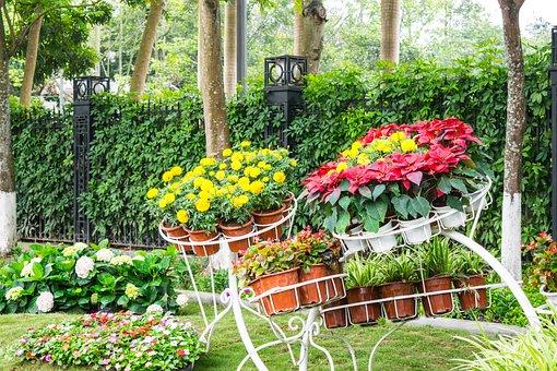 Garden, Flower, Landscaping, Thailand, Path, Way
