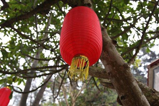 Red Lantern, Hanging, Tree, Xinxing