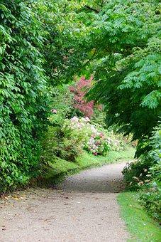 Path, Walkway, Pathway, Garden, Footpath, Natural