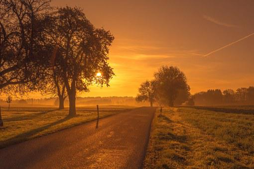 Scenic, Road, Sunrise, Sunset, Trees, Meadow, Morgenrot