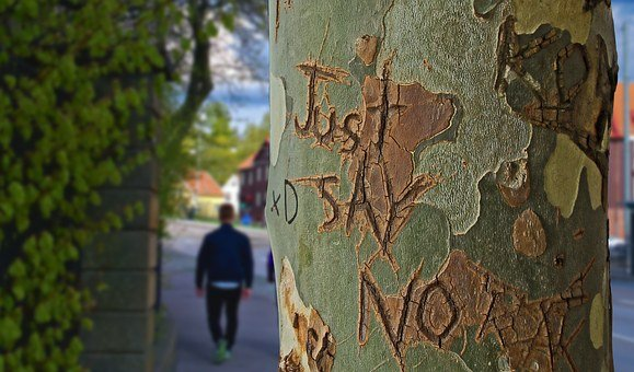 Tree Trunk, Tree, Just Say No, Etched, Engraved