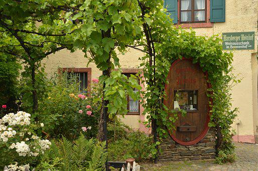 Garden, Grape, Barrel, Wine, Plant, Flower