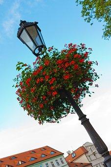 Basket, Beautiful, Colorful, Decoration, Decorative