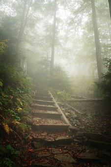 Mountains, Hiking Trail, The Fog, Stairs, Hot, Turbacz