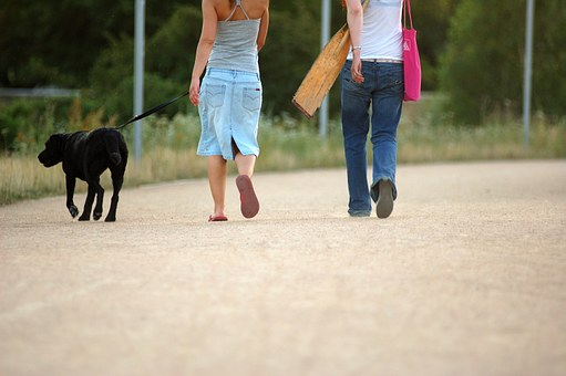 Dog, Walking, Woman, Pet, Walk, Women, Female, Leash