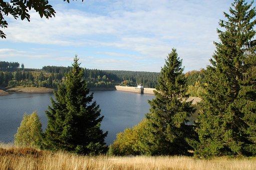 Ecker Dam, Bad Harzburg, Resin, Autumn, Forest, Tree