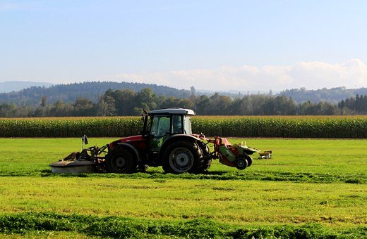 Tractor, Mower, Cutting Machine, Bauer, Mow, Autumn