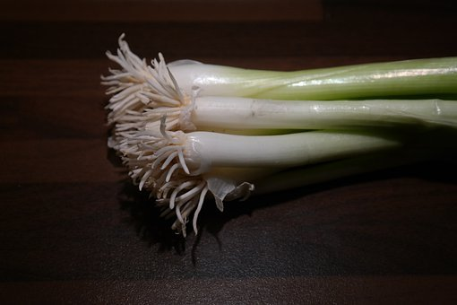 Winter Onion, Leek, Root, Stalk, Vegetables, Crop