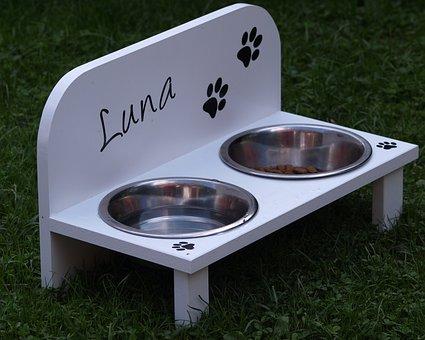 Dog Bowl, Food, Feeding At, Metal Bowl, Water, Drink