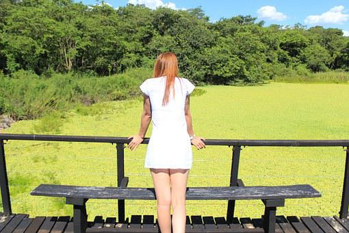 Nature, Holy Pond, Water Hyacinth, Redhead, Ride, Pond