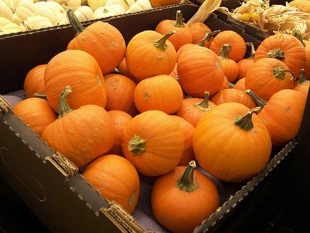 Pumpkins, Crate, Food, Vegetables, Orange, Harvest