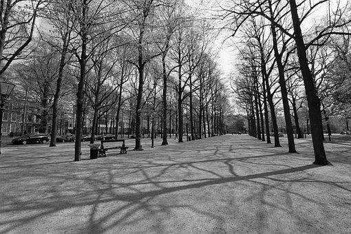 Long Voorhout, The Hague, Hofstad