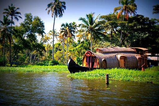 Water, Boats, Trees, Coconuts, Kerala, Houseboats