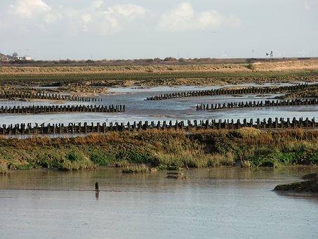 Saltmarsh, Essex, Sea, Defenses, Water, Marsh, Pool