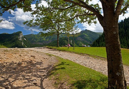Tatry, Landscape, Poland, Mountain, Top, Tree, Nature