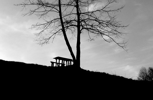 Bench, Black, White, Park, Lifestyle, Young, People
