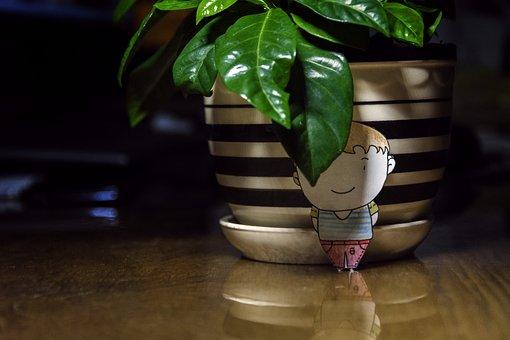 Jasmine, Potted Plants, Device, Plant, Desktop, Leaf
