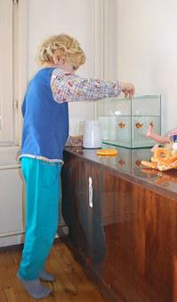 Feeding, Fish, Animal, Child, Toddler, Fish Tank, Water