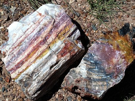 Petrified, Forest, National, Park, Arizona, Usa, Nature