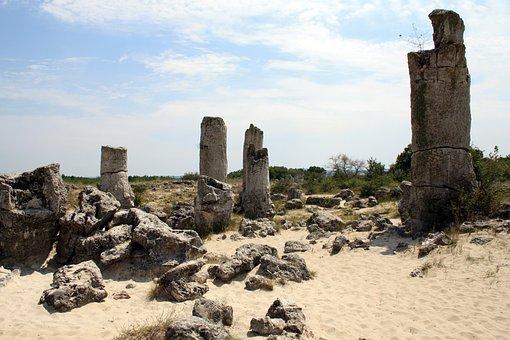 Pobiti Kamuni, Forest, Stone, Petrified
