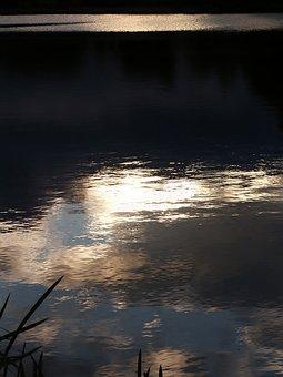 Water, Pond, Evening, Ledenice, Ponds Spas, Reflection
