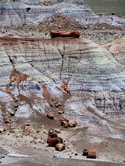 Petrified, Forest, National, Park, Petrified Wood