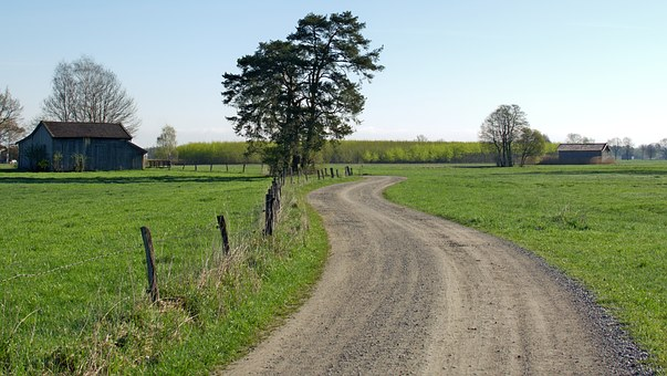 Road, Lane, Away, Nature, Dirt Track, Commercial Way