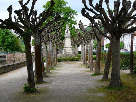 Bath Carlshaven, Weser, Avenue, Tree, Park, Still Image