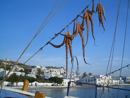 Mykonos, Greece, Harbor, Bay, Ships, Boats, Octopus