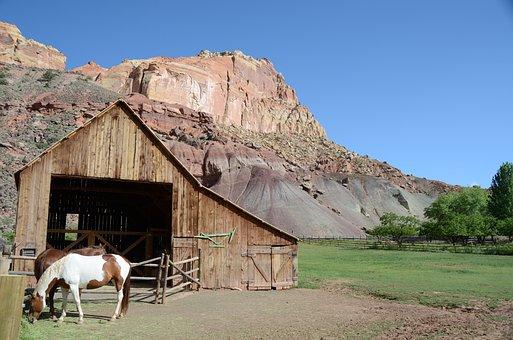 Horse, Barn, Capitol Reef National Park, Utah, Fruita
