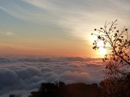 Selva Marine, Sunrise, Kilimanjaro, Africa, Sea Of Fog