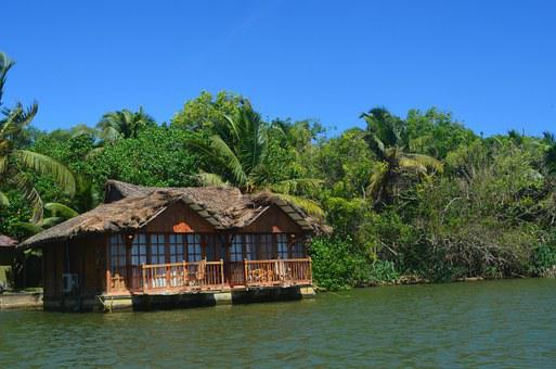 Vacation, Hut, Shack, Palm Trees, Palms, Tropical