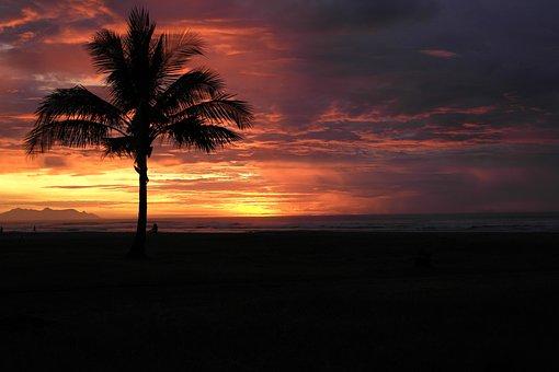 Born Sun, Landscape, Beach, Nature, Horizon, Dawn