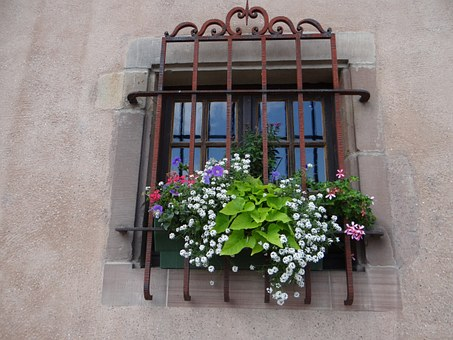 Window, Grid, Flowers, Sarrebourg, Moselle, Facade