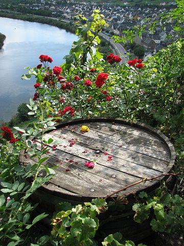 Wine Barrel, Roses, Mosel, Romance, Barrel, Bremm