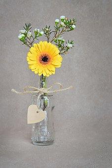Flower, Gerbera, Yellow, Blossom, Bloom, Yellow Flower