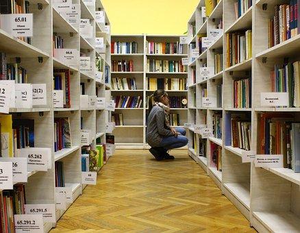 Girl, Library, Books, Reading, Education, Public