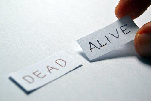 Alive, Dead, Opposite, Choice, Choose, Decision