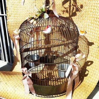 Birds, Cage, Freedom, Symbol, Metaphor, Liberty
