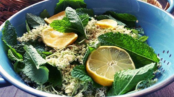 Elder, Mint, Lemon, Herbs, Green, Aromatic, Foliage
