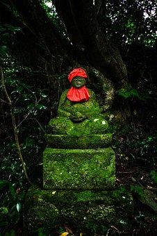 Mysterious, Mountain, Japan, Natural, Light, Woods